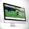 Lunas-Hundeschule-Site-iMac-firmastart-de